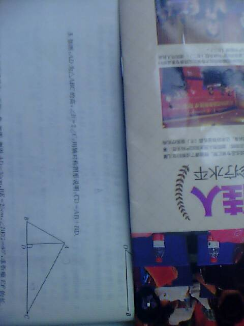 暑假作业七年级下册数学