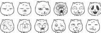 """因表情看起来很猥琐,故名""""猥琐猫""""图片"""