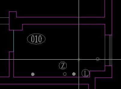 CAD图里圆圈中的Z和L分别代表意思?_百cad梯三维步图片