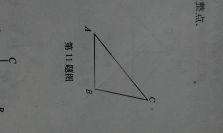 过点b画ac的垂线段ad 过点a画ab的垂线段ae 画出表示点c到线段ab的图片