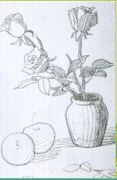 小学六年级下册美术第三课瓶花与水果马晓阳画的,求图图片